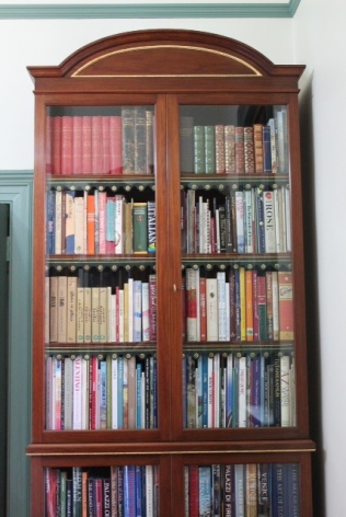 Library bookcase 2